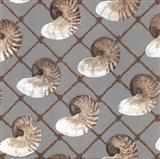 Nautilus Net Art Print