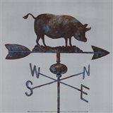 Rural Relic Pig Art Print