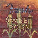 Fresh Sweet Corn Art Print