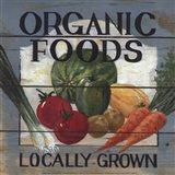 Organic Foods Art Print