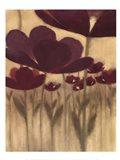 Summer Bloom II Art Print