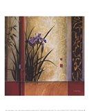 Garden Gateway Art Print