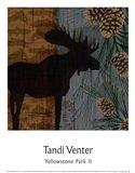 Yellowstone Park II Art Print