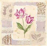 Renaissance Tulip Art Print