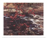The Red Maple Art Print
