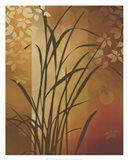Autumn Sunset II Art Print