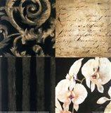 Orchid Sketch II Art Print