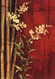 Zen Contemporary Art Print