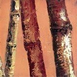 Bamboo Columbia II Art Print
