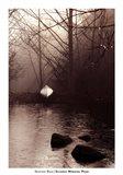 Silvered Morning Pond Art Print