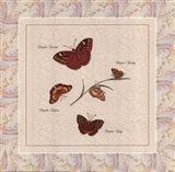 Papilio I Art Print