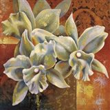 Orchid Collage III Art Print