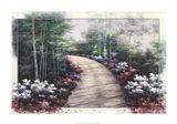 Primavera Pathway Art Print
