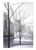 Central Park-Essex House Art Print