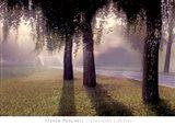 Misty Bridge Art Print