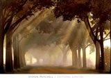 Misty Grove Art Print