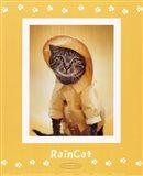 Raincat Art Print