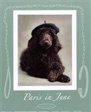 Paris In June Art Print