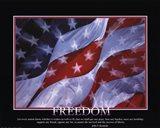 Patriotic-Freedom Art Print