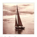 Sailing V Art Print