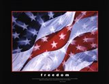 American Pride-Together They Gave Art Print