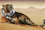 Tiger In Sand Art Print