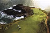 Golf Course, Hawaii Coast Art Print