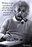 Einstein - Wisdom Art Print