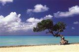 Caribbean Zen Moment Art Print