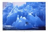Penguins on Blue Ice Art Print