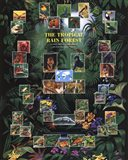 Tropical Rain Forest movie poster Art Print