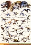 Feathered Dinosaurs II Art Print