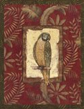 Exotica Parrot Art Print