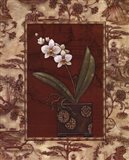 Osaca Floral II Art Print