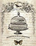 French Birdcage I Art Print