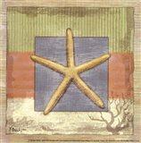 Montego Starfish- petite Art Print