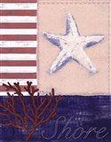 American Coastal III Art Print