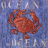 Coastal USA Red Crab Art Print