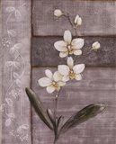 Orchid Shimmer I - Mini Art Print
