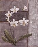 Orchid Shimmer II - mini Art Print