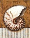 Vintage Shell I - mini Art Print