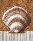 Vintage Shell III - mini Art Print