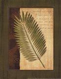 Palm Tropical III Art Print