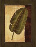 Palm Tropical II Art Print