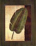Palm Tropical II - grande Art Print