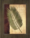 Palm Tropical III - grande Art Print