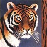 Exotic Tiger - Mini Art Print