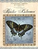 Papilio Blumei Art Print