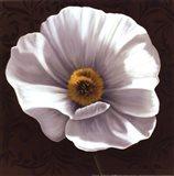 White Poppies I - mini Art Print