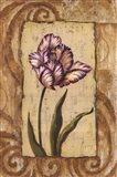 Classic Tulip I Art Print